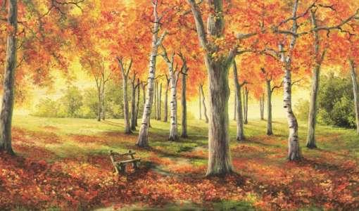 Schönheit der Natur, eingefangen mit den Grundfarben